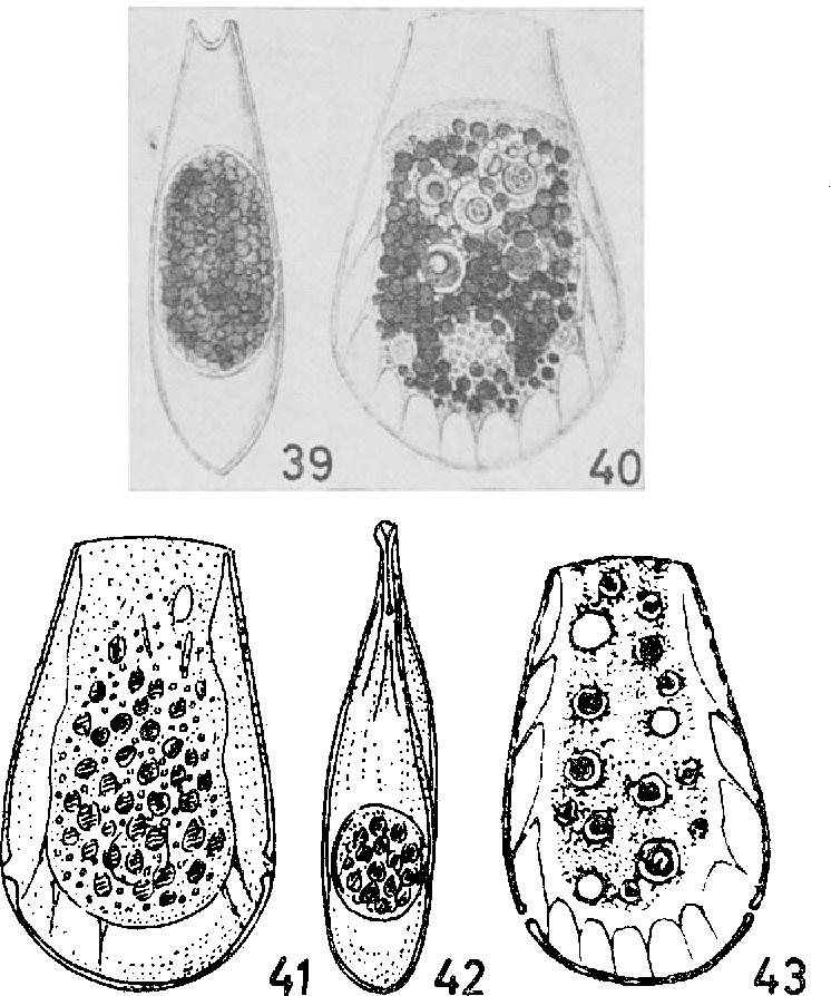 figure 39-43