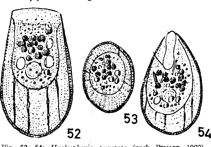figure 52-54