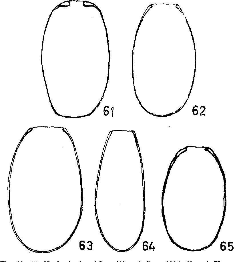 figure 61-65