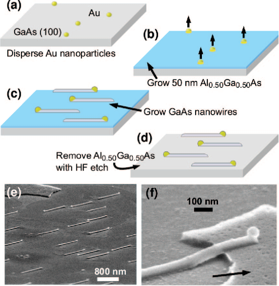 picture relating to Printable Substrates titled Determine 5 versus Planar GaAs nanowires upon GaAs (100) substrates