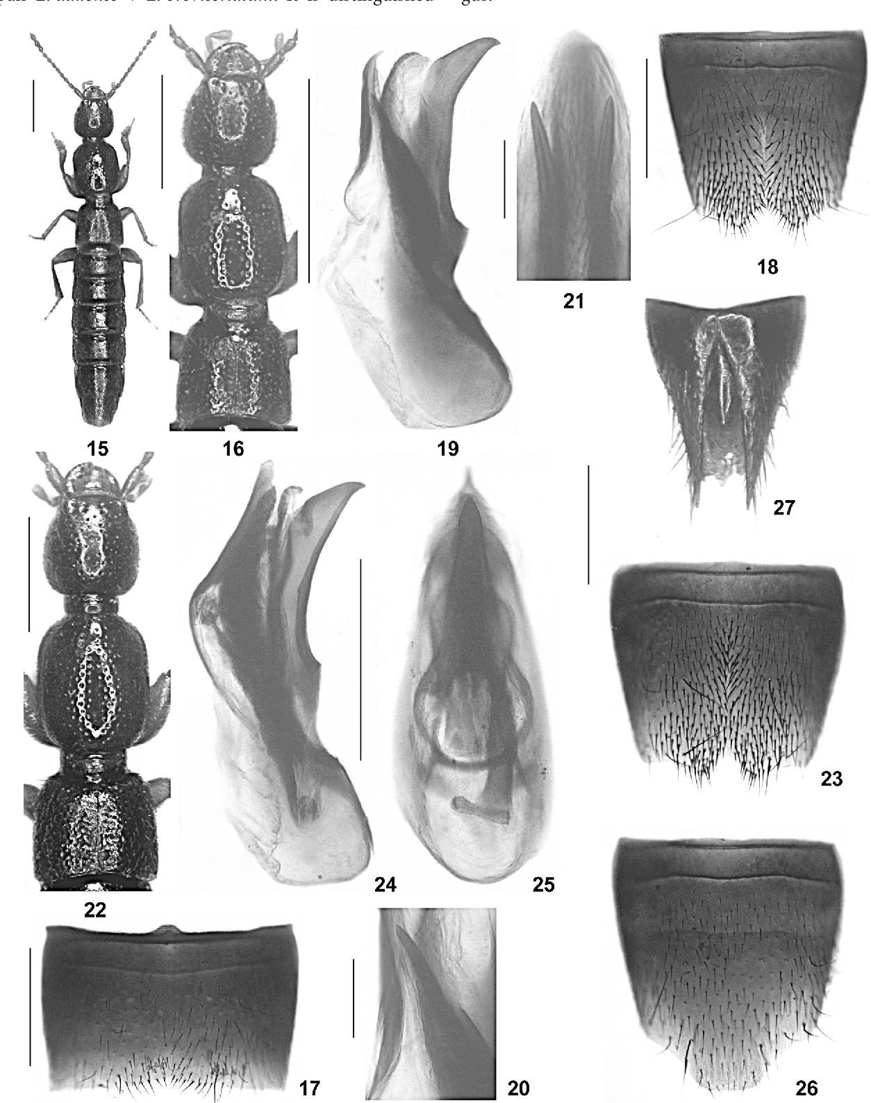 figure 15-27