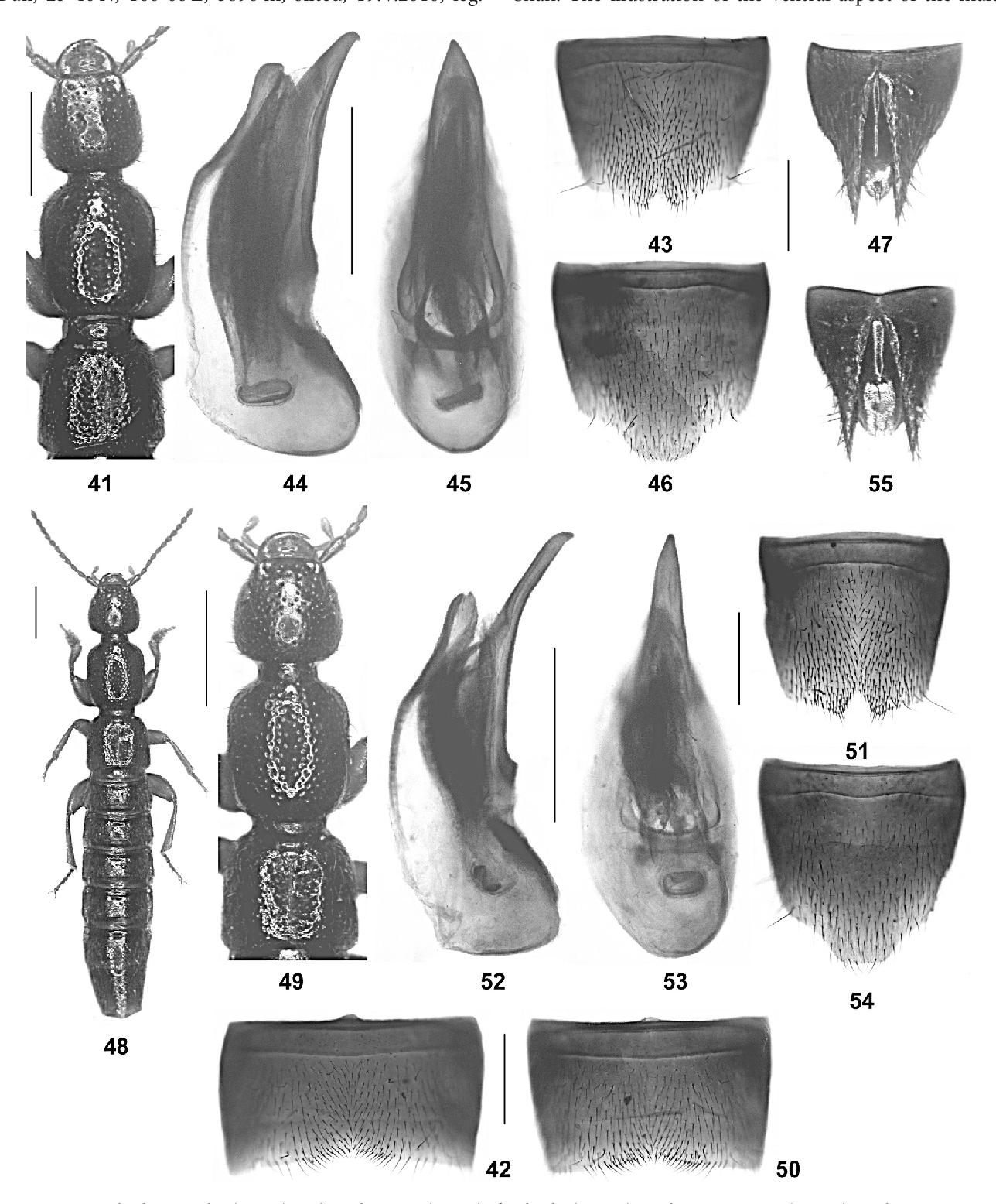 figure 41-55