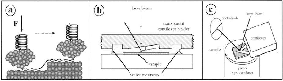 Electronics and High Precision Techniques in Cell Biology Modern Optics