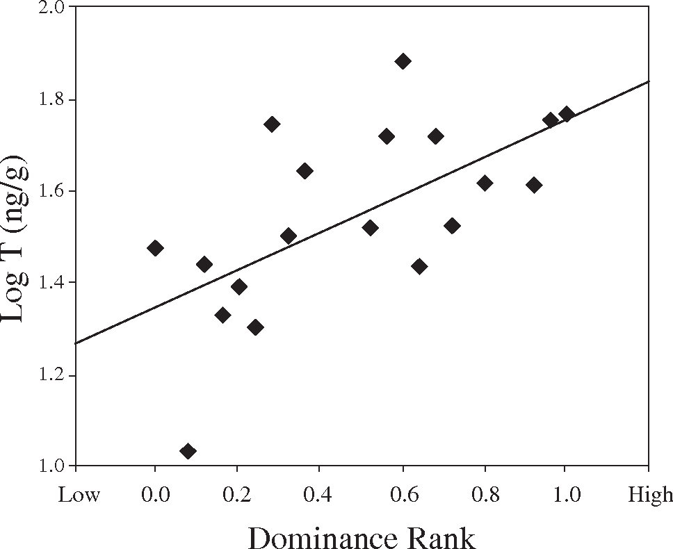 Female testosterone, dominance rank, and aggression in an