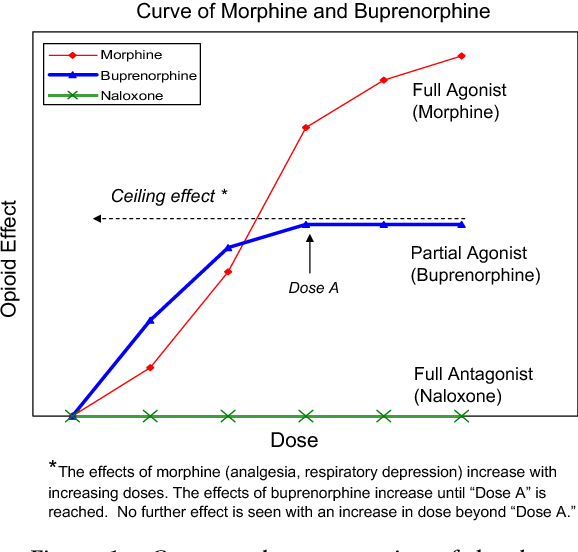 Figure 1 from Sublingual buprenorphine  - Semantic Scholar