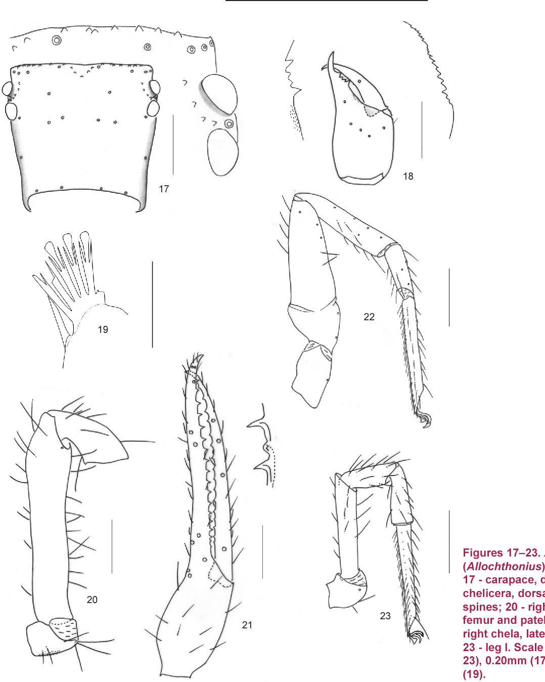 figure 17–23