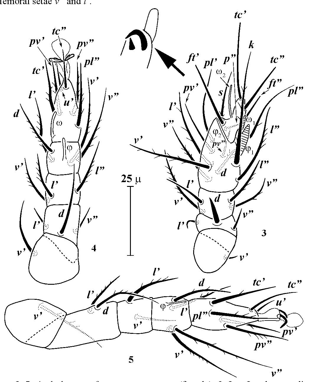 figure 3–5