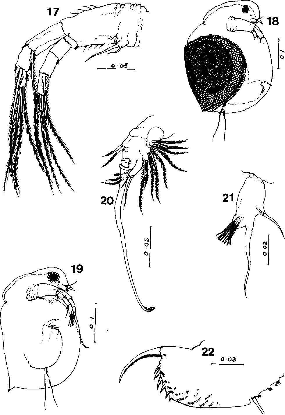 figure 17-22