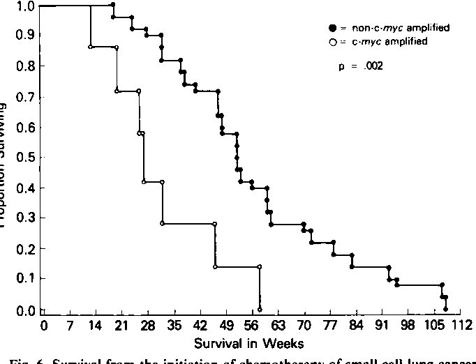 Figure 6 from Different Combination Chemotherapy Regimens
