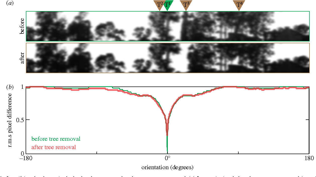 Figure 2 from Subtle changes in the landmark panorama