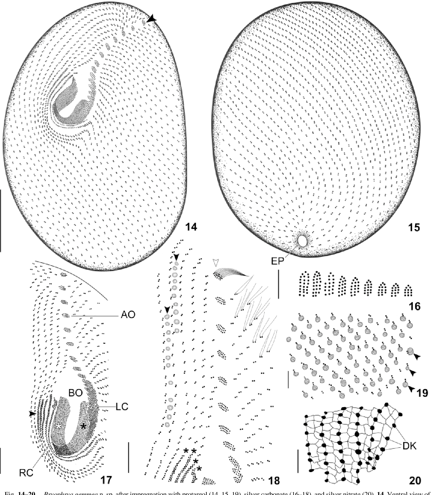 figure 14–20