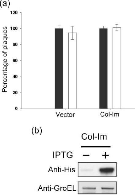 Figure 2 from Interaction of colicin E 7 with the major coat