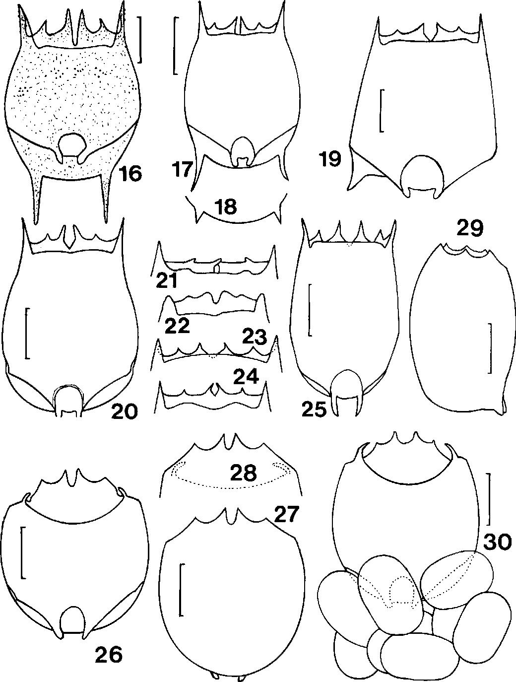 figure 16-25