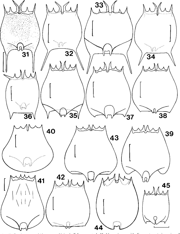 figure 31-43
