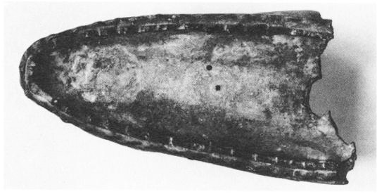 FIG. 2. Serpent head in Istanbul, top (Photo DAI)