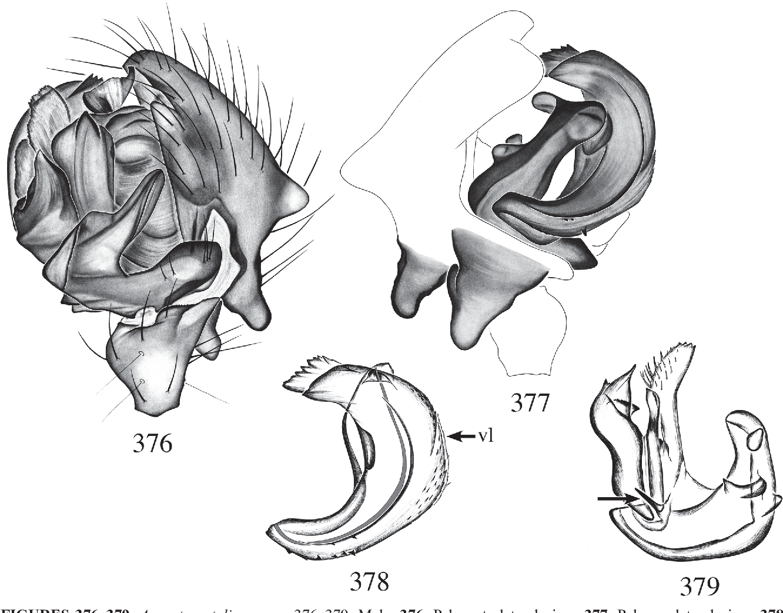 figure 376–379