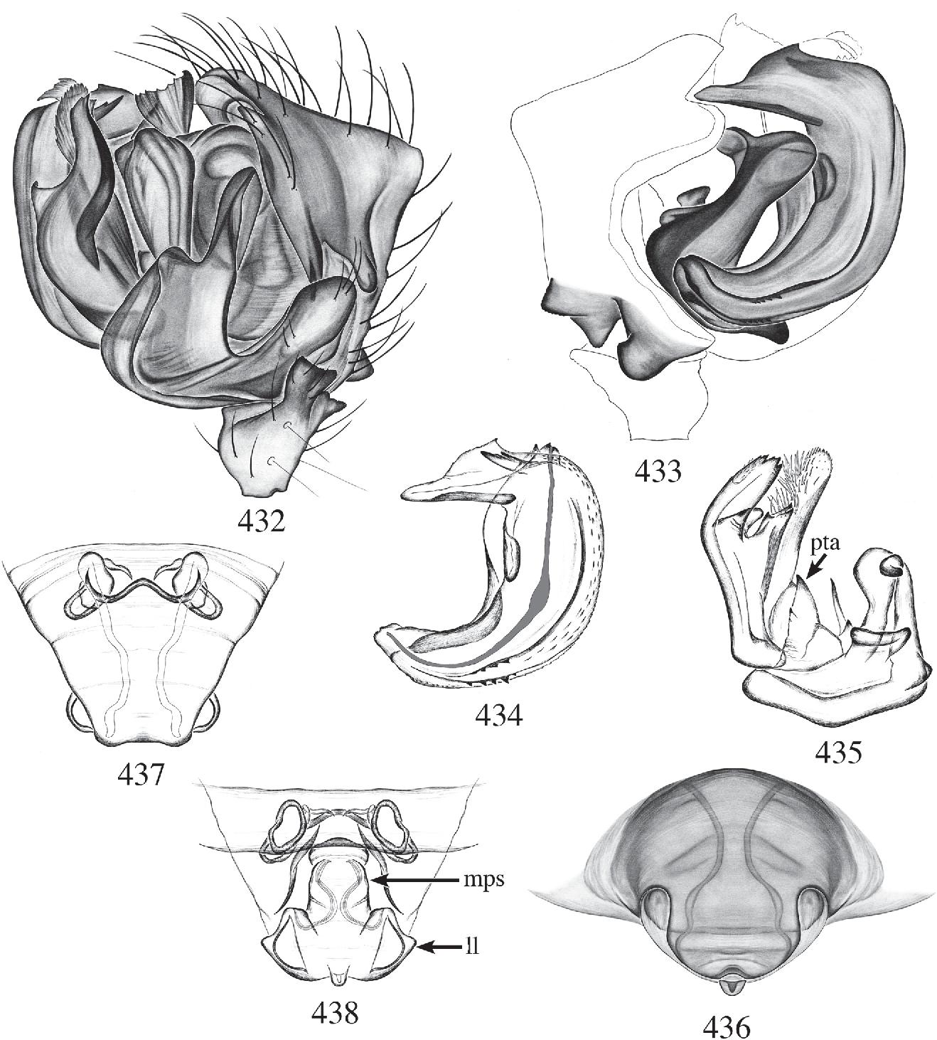 figure 432–438