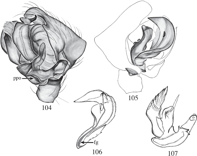 figure 104–107