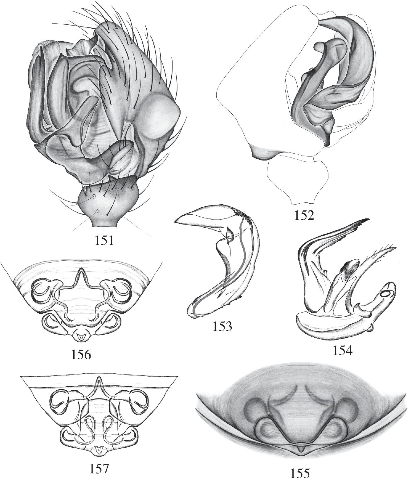 figure 158–164