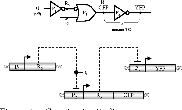Figure 1 from The Device Physics of Cellular Logic Gates