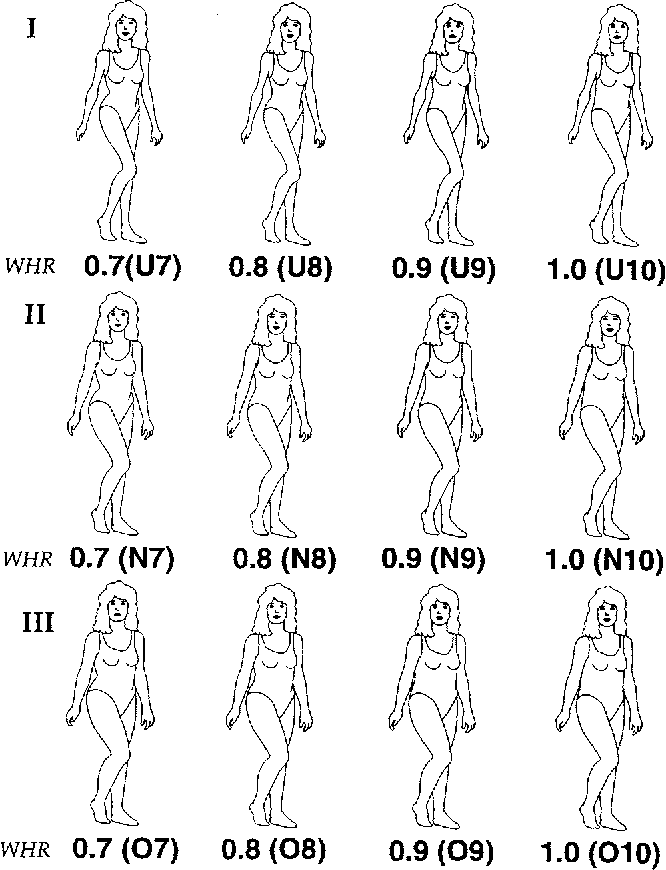 Attractive ratio hip waist most to Health: What