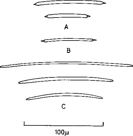 figure 122