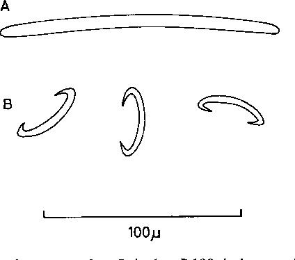 figure 127