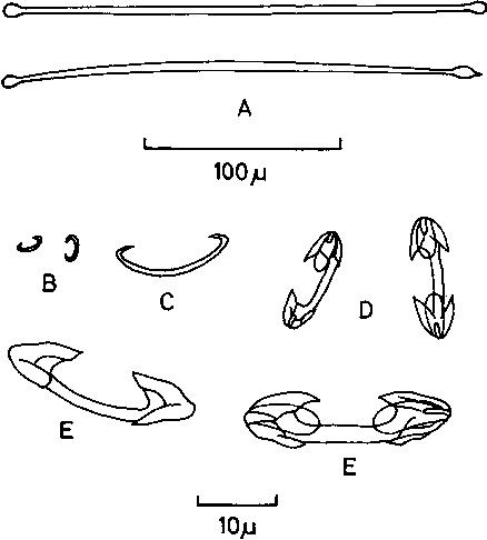 figure 143