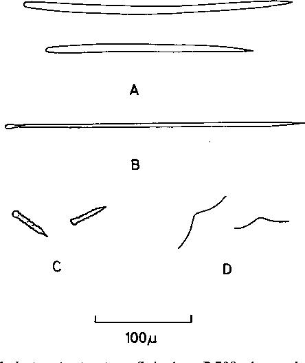 figure 146