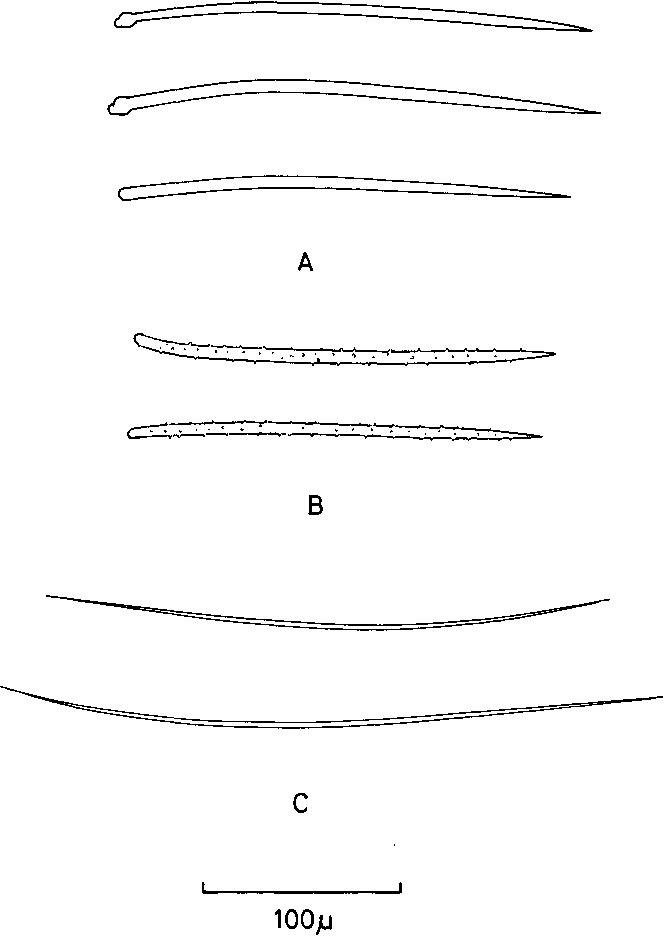 figure 148