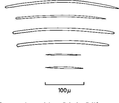 figure 153