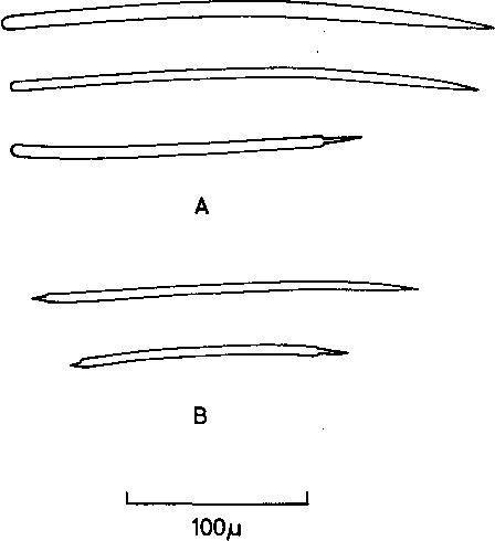 figure 158