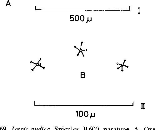 figure 169