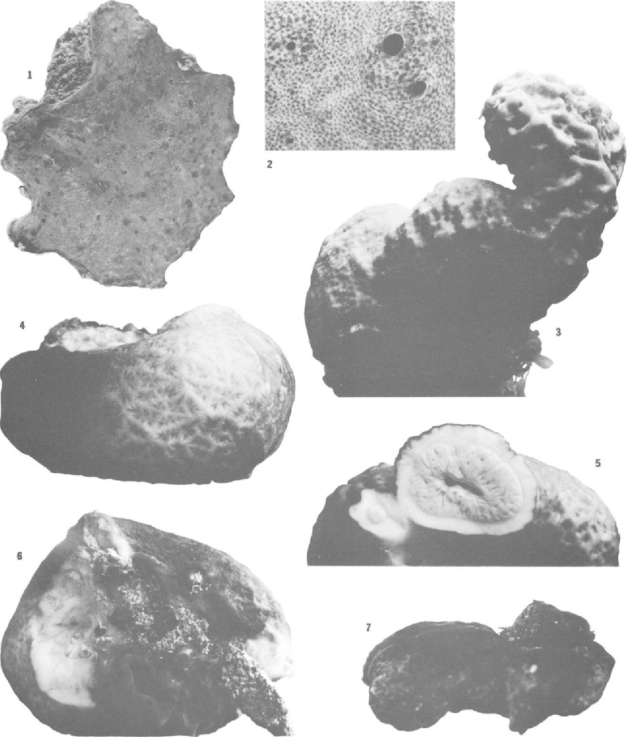 figure 3~6