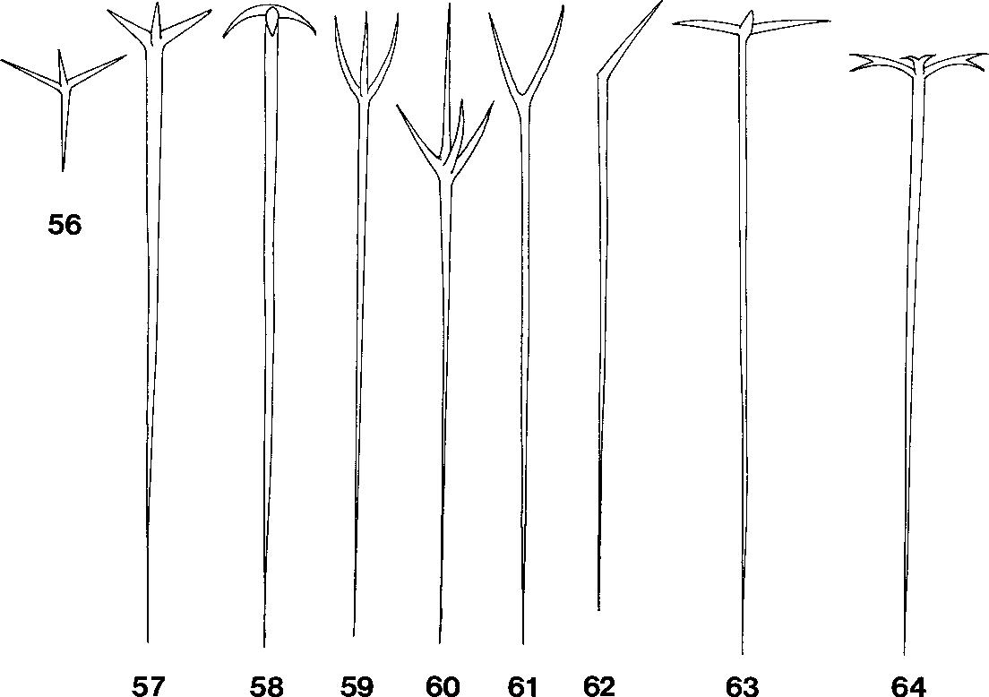 figure 56-64