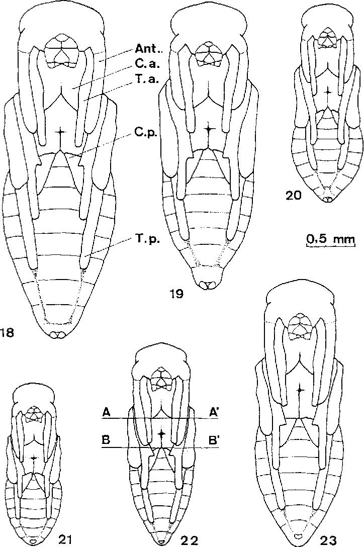 figure 18-20