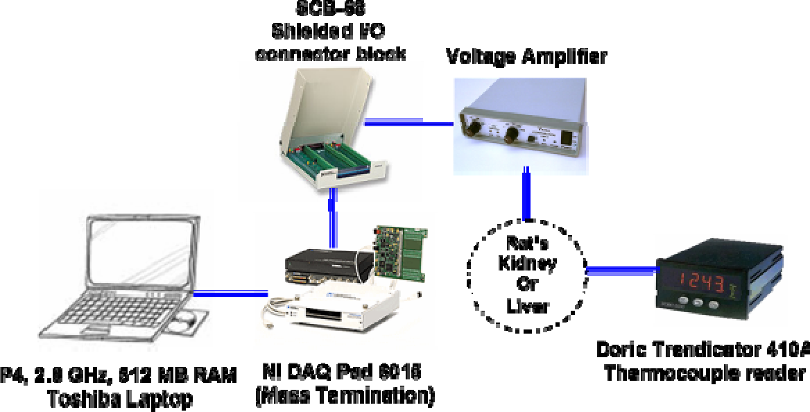 PDF] Development of a Phantom Tissue for Blood Perfusion ...