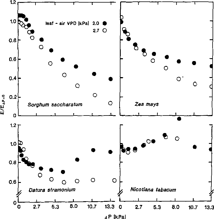 Figure 1 from Transpiration efficiency and apparent