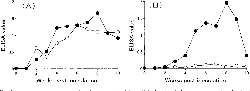 Fig. 2. Immune response against rNc-p43 in mice inoculated with trial and control immunogens, with and without the heat extract of bitter gourd pulp, respectively. Antibody titers were measured by ELISA using anti-mouse IgG1 and IgG2a rat monoclonal antibodies. Each titer was the average value from 3 mice. (A) Mouse IgG1 antibody response. (B) Mouse IgG2a antibody response. : Trial and : Control immunogen groups.
