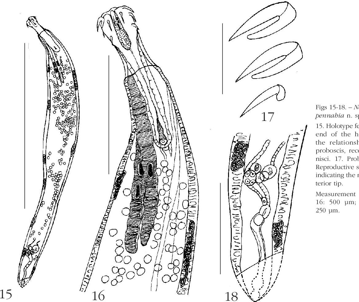figure 15-18