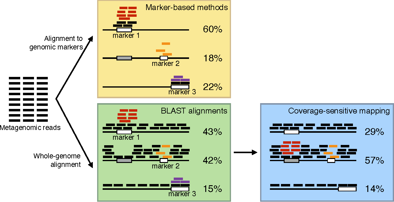 Figure 1 from MetaFlow: Metagenomic Profiling Based on Whole ... on genotype mapping, plasmid mapping, ecosystem mapping, internet mapping, family mapping, dna mapping, heart mapping, taxonomy mapping,