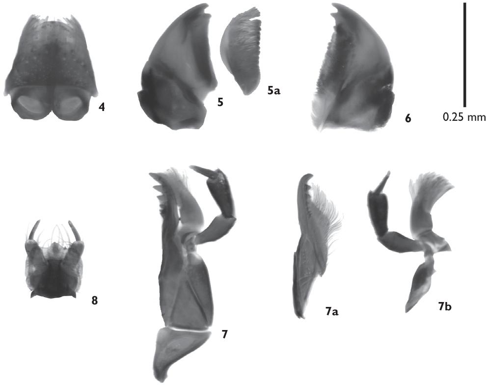 figure 4–8