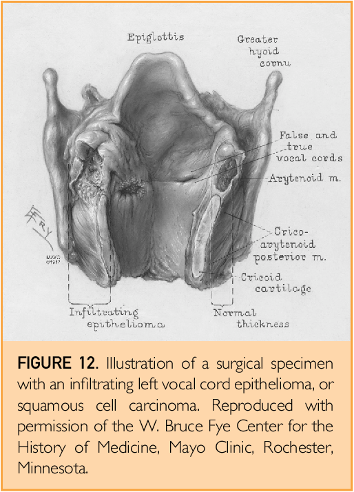 Figure 12 from The History of Otorhinolaryngology at Mayo