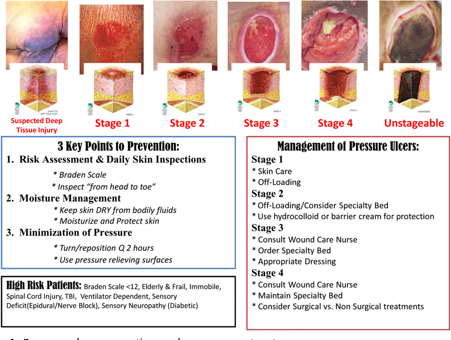 Figure 4 From Development Of An Evidence Based Pressure Ulcer Program At The National Naval Medical Center Nurses Role In Risk Factor Assessment Prevention And Intervention Among Young Service Members Returning From Oif Oef