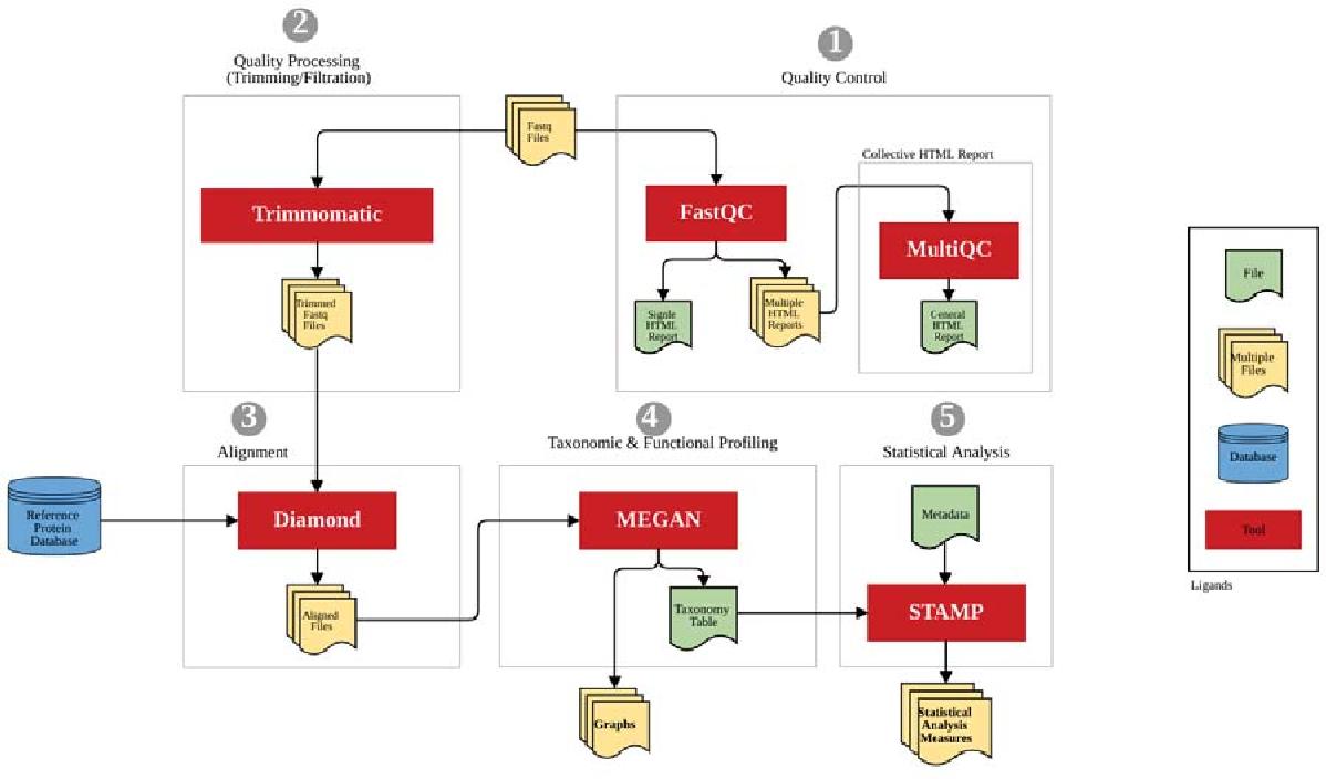 MetaFlow: an interactive user-friendly workflow for