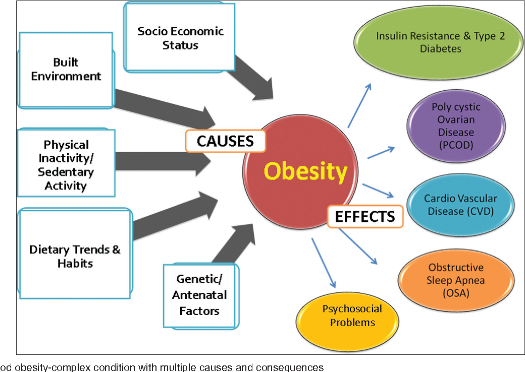 Determinants Consequences And Prevention Of Childhood Overweight And Obesity An Indian Context Semantic Scholar