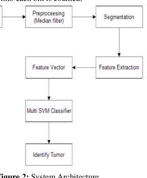 PDF] Brain Tumor Classification Using SVM and Histogram
