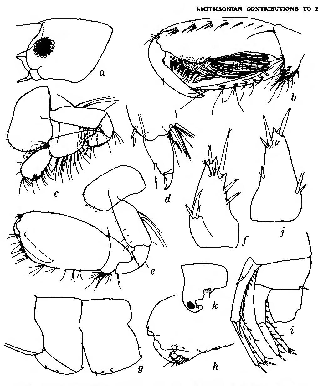 figure 103