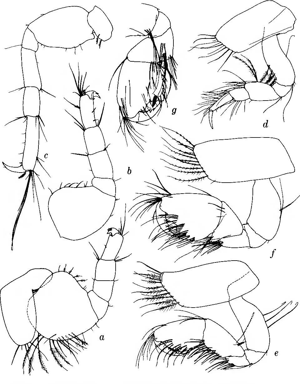 figure 121
