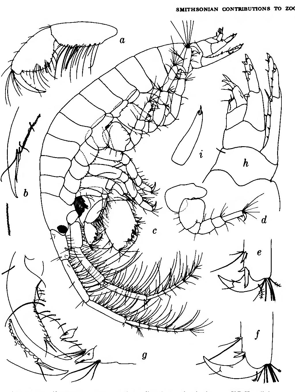figure 133